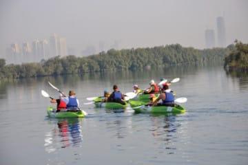 Vootours Mangrove Kayaking (Small)